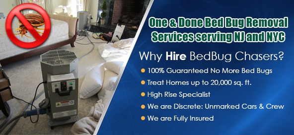 Get Rid of Bed Bugs Westchester County , Bed Bug Spray Westchester County , What to do Bed Bugs look like Westchester County , Kill Bed Bugs Westchester County , Bed Bug Treatment Westchester County , Bed Bug Dog Westchester County , How to get Rid of Bed Bugs Westchester County , Bed Bug Heat Treatment Westchester County , Bed Bug Eggs Westchester County , Bed Bug Exterminator Westchester County , Get Rid of Bed Bugs Westchester NY , Bed Bug Spray Westchester NY , What to do Bed Bugs look like Westchester NY , Kill Bed Bugs Westchester NY , Bed Bug Treatment Westchester NY , Bed Bug Dog Westchester NY , How to get Rid of Bed Bugs Westchester NY , Bed Bug Heat Treatment Westchester NY , Bed Bug Eggs Westchester NY , Bed Bug Exterminator Westchester NY