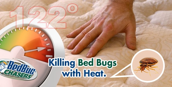 A Westchester Bed Bug Heat Treatment Is The Best Solution For Bed Bugs