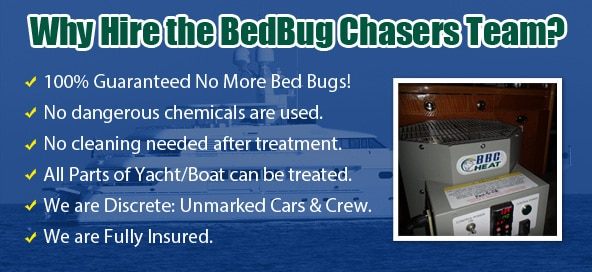 Aircraft Bed Bug Treatment , Pirvate Jet Bed Bug Treatment , Airplane Bed Bug Treatment , Bed Bug Bites Westchester County , Bed Bug Pictures Westchester County , Chemical Free Bed Bug Treatment Westchester County , Get Rid of Bed Bugs Westchester County , Bed Bug Spray Westchester County , What to do Bed Bugs look like Westchester County , Kill Bed Bugs Westchester County , Bed Bug Treatment Westchester County , Bed Bug Dog Westchester County , How to get Rid of Bed Bugs Westchester County , Bed Bug Heat Treatment Westchester County , Bed Bug Eggs Westchester County , Bed Bug Exterminator Westchester County